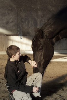 Bild von einem Kind das ein Pferd streichelt